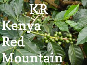Kenya-redmountain